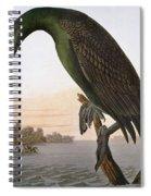 Audubon: Cormorant Spiral Notebook