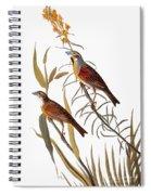 Audubon: Dickcissel Spiral Notebook