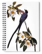 Audubon Flycatcher, 1827 Spiral Notebook