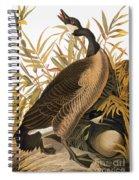 Audubon: Goose Spiral Notebook