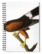 Audubon: Hawk, 1827 Spiral Notebook