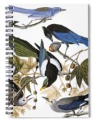 Audubon: Jay And Magpie Spiral Notebook