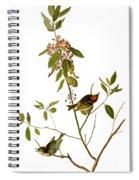 Audubon: Kinglet, 1827 Spiral Notebook