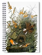 Audubon: Meadowlark Spiral Notebook