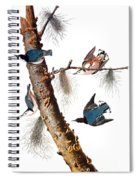 Audubon: Nuthatch Spiral Notebook
