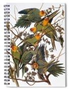 Audubon: Parakeet Spiral Notebook