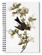 Audubon: Pewee, 1827-38 Spiral Notebook