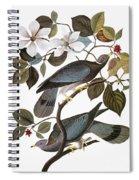 Audubon: Pigeon Spiral Notebook