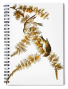 Audubon: Siskin Spiral Notebook