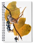 Audubon: Sparrow Spiral Notebook