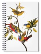 Audubon: Sparrows Spiral Notebook