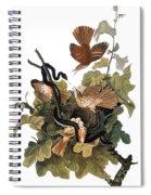 Audubon: Thrasher Spiral Notebook