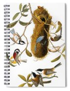 Audubon: Titmouse Spiral Notebook