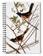 Audubon: Towhee Spiral Notebook
