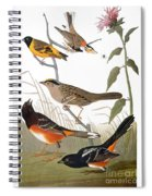 Audubon: Various Birds Spiral Notebook