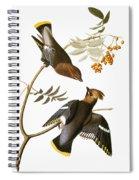 Audubon: Waxwing Spiral Notebook