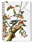 Audubon: Woodpecker, 1827 Spiral Notebook