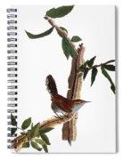 Audubon: Wren, (1827-38) Spiral Notebook