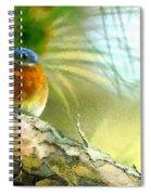 Augusta Masters 2010 05 Spiral Notebook
