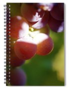 Auntie Thelma's Grapes - Ripening Spiral Notebook