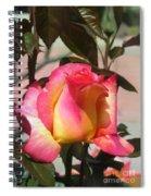 Aurora Color Rose Bud. Wow Spiral Notebook