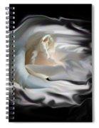 Aurora Rosealis Spiral Notebook