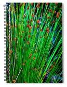 Australian Native Grass Spiral Notebook