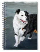 Australian Shepard Border Collie Spiral Notebook