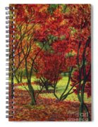 Autum Red Woodlands Painting Spiral Notebook