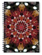 10446 Autumn 01 Kaleidoscope Spiral Notebook