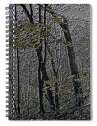 Autumn 2015 Panorama In The Woods Pa 01 Spiral Notebook
