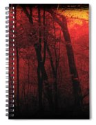 Autumn 2015 Panorama In The Woods Pa 06 Spiral Notebook