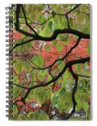 Autumn 7 Spiral Notebook
