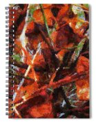 Autumn Allegretto Spiral Notebook