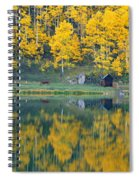 Autumn Aspens Along Route 550, North Spiral Notebook