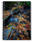 Autumn At A Mountain Stream Spiral Notebook