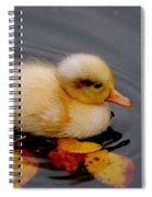 Autumn Baby Spiral Notebook