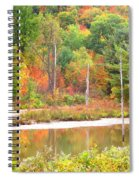 Autumn Beaver Pond Spiral Notebook