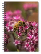 Autumn Bee On Flowers Spiral Notebook