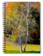 Autumn Birch Spiral Notebook