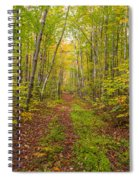 Autumn Birch Woods Spiral Notebook