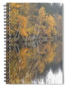 Autumn Birches On The Shore Of Lake Spiral Notebook