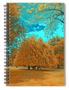 Autumn Blaze Spiral Notebook