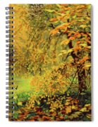 Autumn Bliss Of Color Spiral Notebook