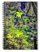 Autumn Blue  Spiral Notebook