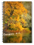 Autumn Calm Spiral Notebook