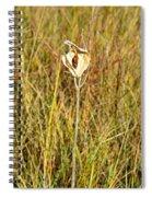 Autumn Caped Spiral Notebook