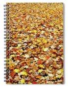 Autumn Carpet Spiral Notebook