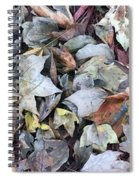 Autumn Carpet II Spiral Notebook