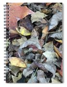 Autumn Carpet Spiral Notebook